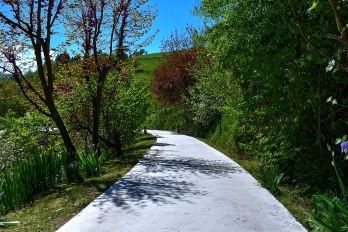 Road_From_House